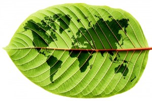 agriculture-bio-nourrir-population-mondiale-04