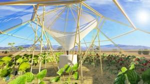 greenhouse-ethiopie-eau-2